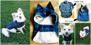 diy4ever- DIY Pet Coat Pattern & Tutorial