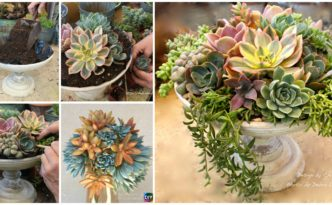 diy4ever- DIY Succulent Centerpieces in 5 Easy Steps