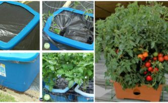 diy4ever-DIY Self Watering Containers Step by Step Tutorial