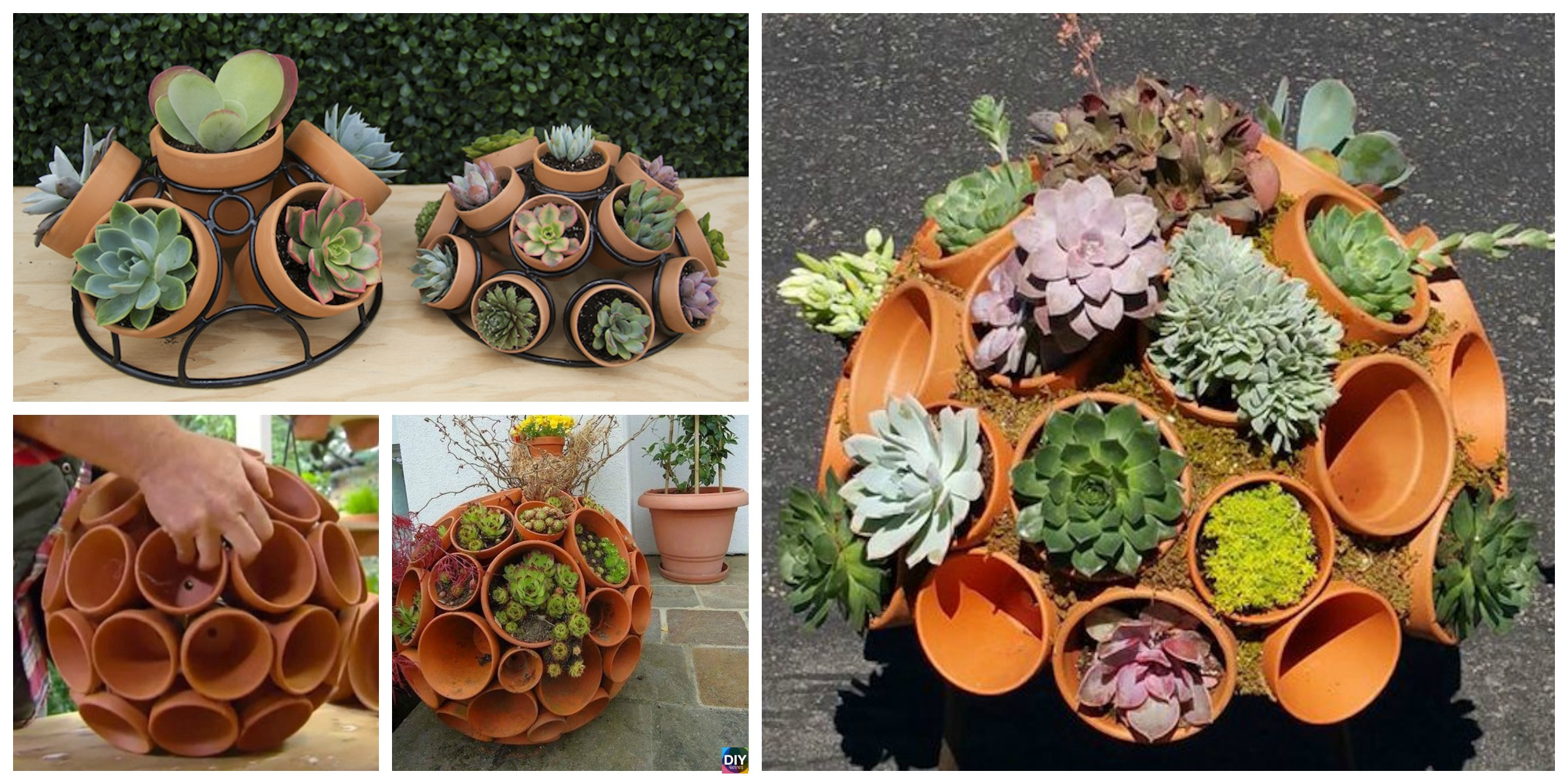 DIY Succulent Sphere Tutorial – Use Clay Pot