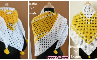 diy4ever- Beautiful Crochet Granny Shawl - Free Pattern