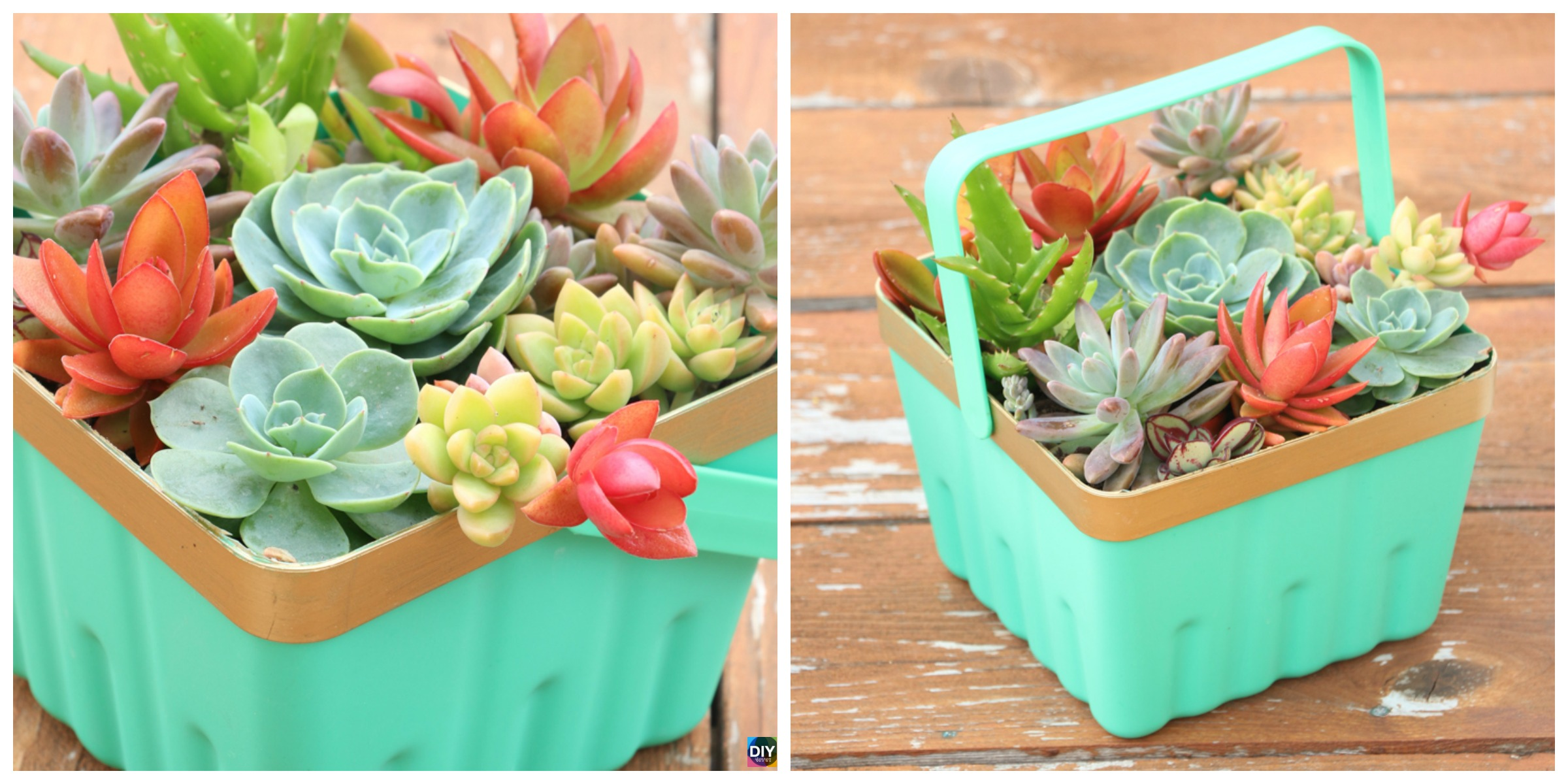 Simple DIY Basket Succulent Planter