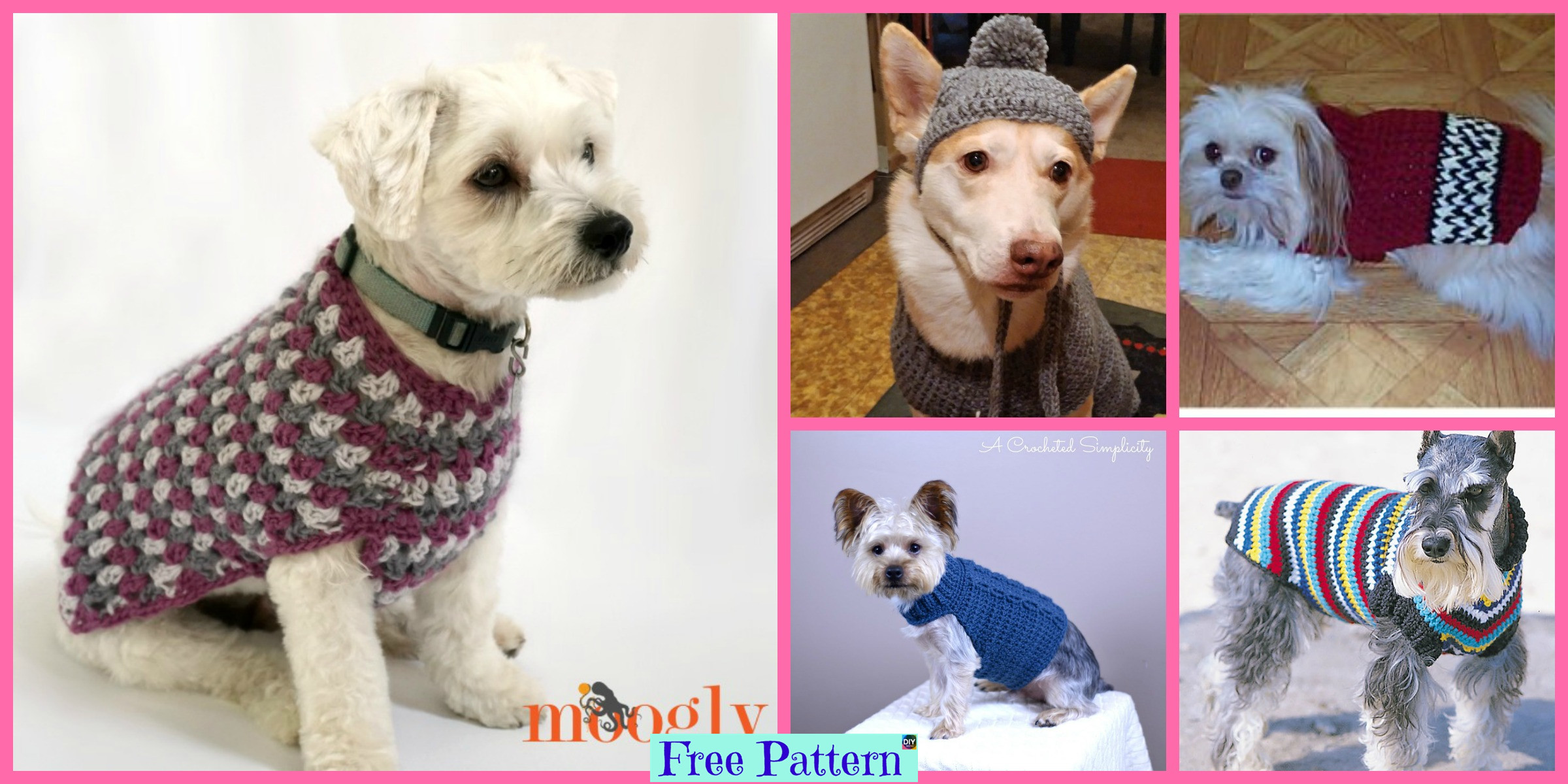10 Cozy Crocheted Dog Sweater Free Patterns Diy 4 Ever