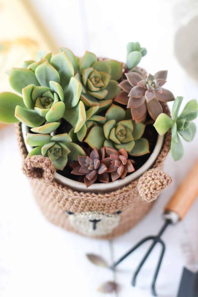 Adorable Crochet Animal Planter - Free Patterns